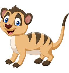 Cartoon happy meerkat vector