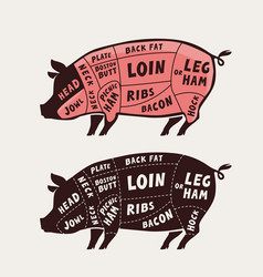 Cut meat pork poster butcher diagram and vector