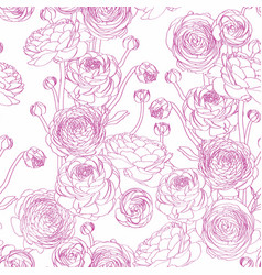 Elegant seamless pattern with line ranunculus vector