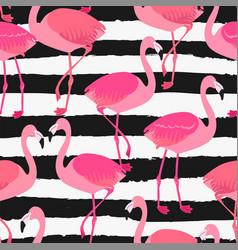 Flamingo allover on torn stripe vector