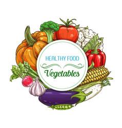 Fresh vegetables sketch farm food and veggies vector