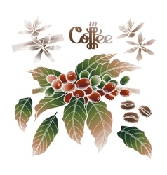 Graphic coffee collection vector image