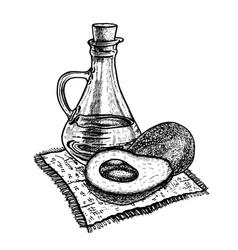 Hand drawn sketch of avocado oil vector