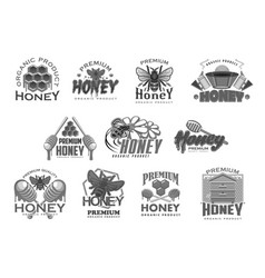 Honey beekeeping bee and honecomb icons vector
