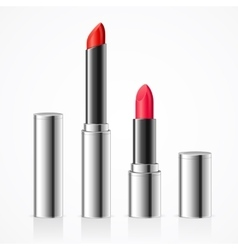 Lipstick in Silver Metal Tube Set vector