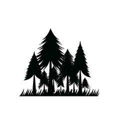 pine forest icon design template isolated vector image