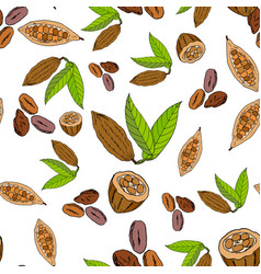 Seamless pattern with cacao vector