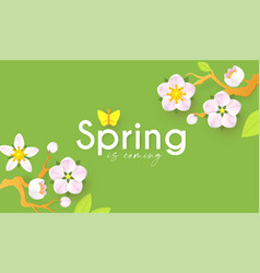 Spring background with soft flowers bees vector