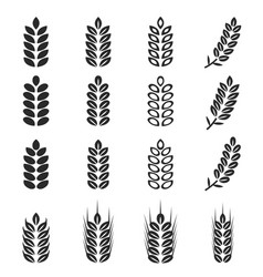 wheat icons set vector image