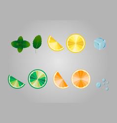 citrus fruits set slices of lemon orange lime ice vector image