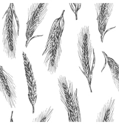 Seamless pattern with ears of wheat vector