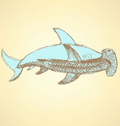 Sketch hammerhead shark in vintage style vector