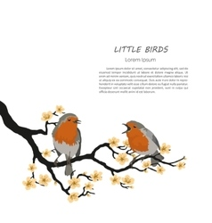 Two birds sitting on a flowering branch vector image vector image