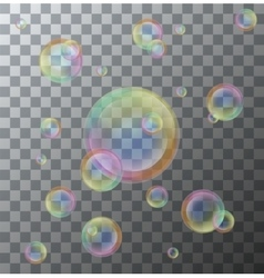 modern soap bubbles on background vector image