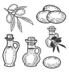 set olives olive oil design element for logo vector image vector image