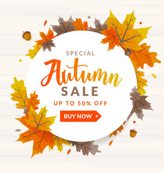 autumn sale discount background vector image