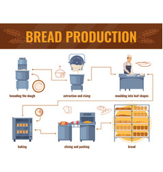 Bread production cartoon infographics vector