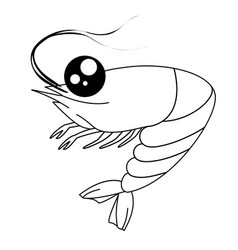 cartoon shrimp contour drawing coloring shrimp vector image