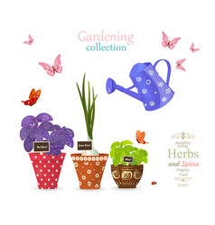 Design banner with collection of delicious herbs vector