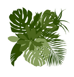 green composition with plain tropical leaves vector image
