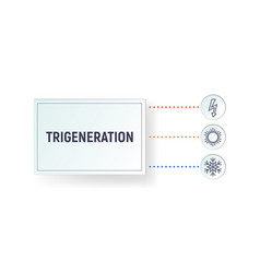 Infographics trigeneration vector