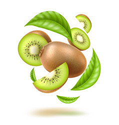 realistic kiwi swirl motion with leaves vector image