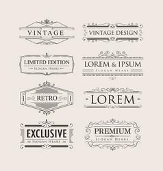 set vintage luxury calligraphy flourishes elegant vector image