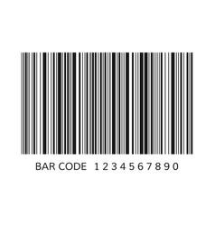 unique bar code template striped identification vector image