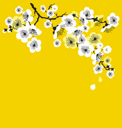 white sakura blossom on sunny yellow background vector image vector image
