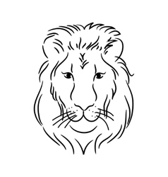 head of the lion vector image vector image
