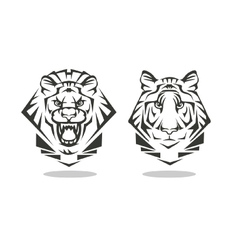 tiger and lion vector image vector image
