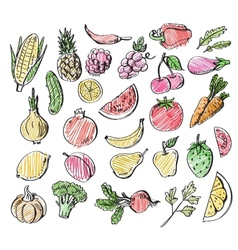 hand drawn fruits and vegetables vector image vector image