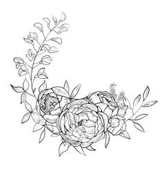 Bouquet of peony element of design vector