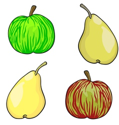 apple and pear fruit set of vector image