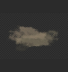 Cloud dust with dirt particles realistic vector