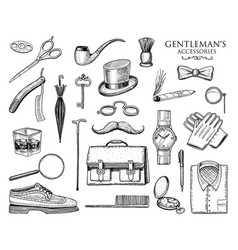 Gentleman accessories set hipster or businessman vector