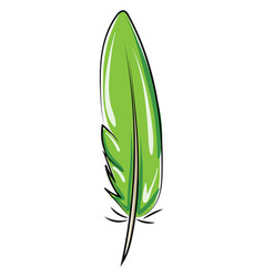 green feather on white background vector image