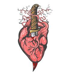 human heart pierced knife tattoo vector image