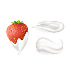 ripe juicy strawberry with tender whipped cream vector image