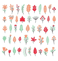 set leaves and flowers vector image