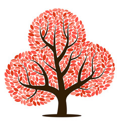 tree with red leaves vector image