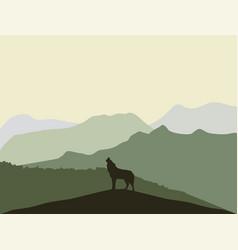 wolf nature landscape vector image