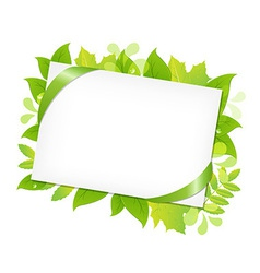Green Leafs And Blank Gift Tag vector image vector image
