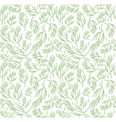 herbs seamless pattern dill endless background vector image vector image