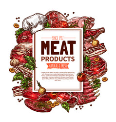 fresh meat product sketch poster for food design vector image