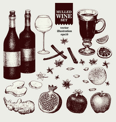 mulled wine and spices orange apple pomegranate vector image