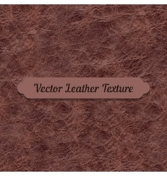 brown crumpled leather texture vector image vector image