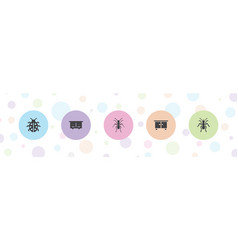 5 insect icons vector