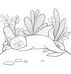 a children coloring bookpage a sleeping cat on vector image