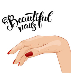 beautiful manicure vector image